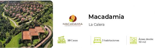 minibanner_macadamia