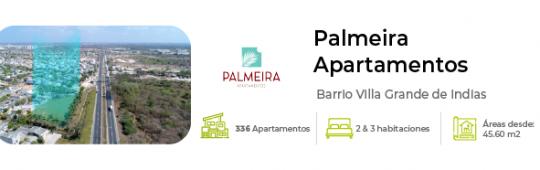 minibanner_palmeira
